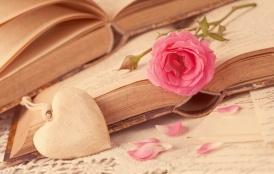 books-heart-love-flower-rose